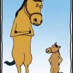 Маленький конь и большая лошадь. Разница в два раза