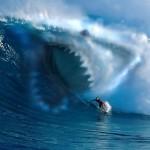 Фото виртуальной акулы, которая хочет съесть сёрфера