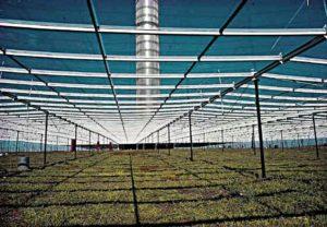 Земледелие под коллектором тягово-ветровой башни